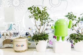 tokyo google careers