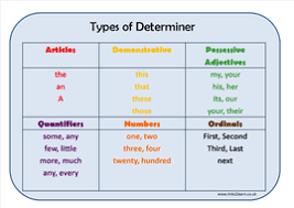 types of determiner learning mat by eric t viking teaching