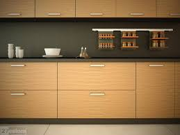 Veneer Kitchen Dr Good Looking Modern Cabinet Doors Replacement - Modern kitchen cabinets doors