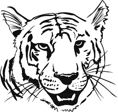 coloring page tigers tiger coloring pages