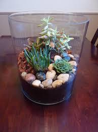 succulent terrarium pinterest challenge in which a tiny plastic