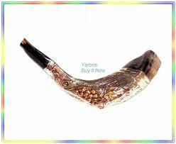 buy shofar amazing christian 16 silver plated rams shofar judaica israel by