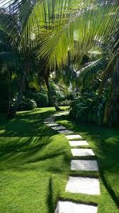 Tropical Backyard Ideas Caribbean Garden Tropical Landscape Miami Craig