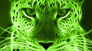 Meaning Of Color by The Color Green Means Green Meaning Green Color Psychology