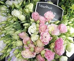 Wedding Flowers In October 12 Top Flowers For Your Wedding A Lavish Affair