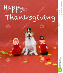 happy thanksgiving stock image image 33197591