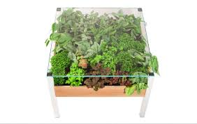 indoor living wall planter full size of living to w55 plants wall