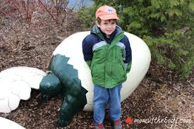 a one of a kind egg hunt at the toronto zoo mom vs the boys
