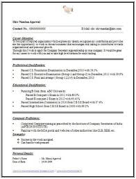 1 page resumes 1 page resume format contegri com modern 1 page