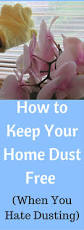 Cleaning Tips For Home by Tips For Keeping Your Home Dust Free When You Dusting