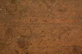 Free Laminate Flooring Free Images Texture Old Wall Soil Dirty Material Wood