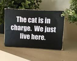 Funny Home Decor Signs Funny Cat Sign Etsy