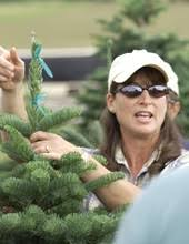 Pacific Northwest Christmas Tree Association - christmas tree short course pacific northwest christmas tree