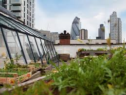 18 of the best rooftop restaurants in london