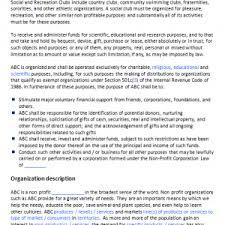non profit business plan templates