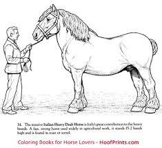 horses coloring book www hoofprints