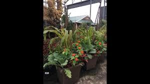 Landscape Nurseries Near Me by Sanders Nursery U2013 Wholesale Nursery And Plant Supplies