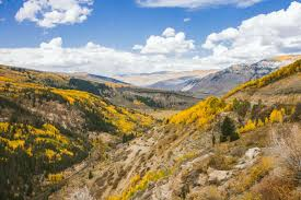 colorado autumns compared fall foliage