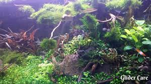 aquascape design like nature youtube