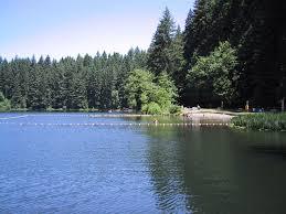 Washington lakes images Aquatic plant monitoring environmental assessment program jpg