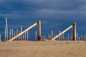 cape cod truro beach search in pictures