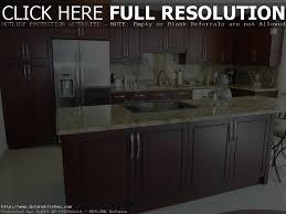 Custom Kitchen Cabinets Miami Kitchen Cabinets Miami Design District Tehranway Decoration