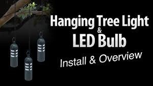 hanging tree light led light bulb install overview by total