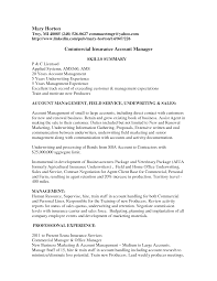 Resume Samples Insurance by Sample Underwriter Resume
