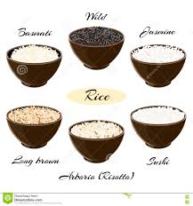types of mugs different types of rice in bowls stock illustration image 80325804