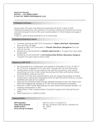 Sample Resume Templates For It Professional by Resume Examples Business Objects Resume Sample Grayshonco Resume