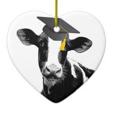 cow ornaments keepsake ornaments zazzle