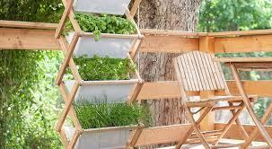 gem se pflanzen balkon kräuter pflanzen auf dem balkon kein platz