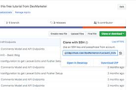 github tutorial key how to setup a laravel project you cloned from github com devmarketer