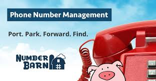 number parking toll free and local numbers call forwarding