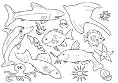 printable complicated fish coloring pages adults tropical