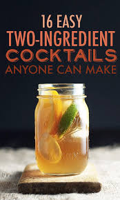 What Do You Need For A Cocktail Party - 16 two ingredient cocktails anyone can make