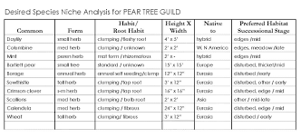 herb growing chart gaia creations beyond companion planting guild building a forest