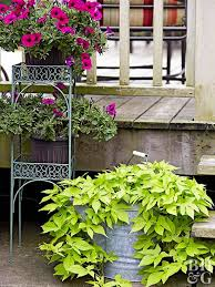 Green Side Up Landscaping by 1783 Best Images About Landscaping On Pinterest