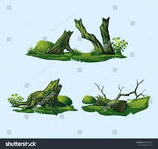 high quality broken trees stumps isolated stock vector 556338256