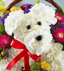 dog flower arrangement a dog able in a basket 1800flowers 161097