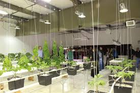 photo blog u2013 tour the technology center east grow rooms growers