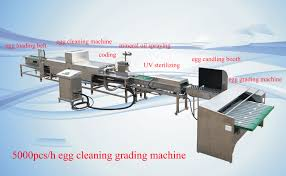 5000pcs h egg cleaning grading machine manufacturer from shenzhen