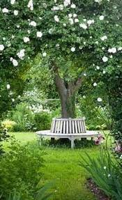 60 best images about groentetuin on pinterest gardens tes and