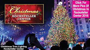 in rockefeller center 2016 live tree