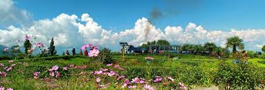 Rock Garden Darjeeling by Darjeeling Tour 14 Places To Visit And Things To Do