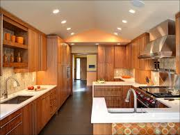 100 how much do custom kitchen cabinets cost fresh how much