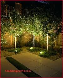 the best landscape lighting what is the best low voltage landscape lighting low voltage outdoor
