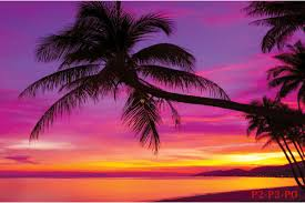 mural view sea sunset and palm trees in purple wallpapers mural view sea sunset and palm trees in purple