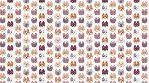 kitty cat faces pattern 2560x1440 wallpaper