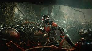 let u0027s nerd out about ants before you see ant man wired